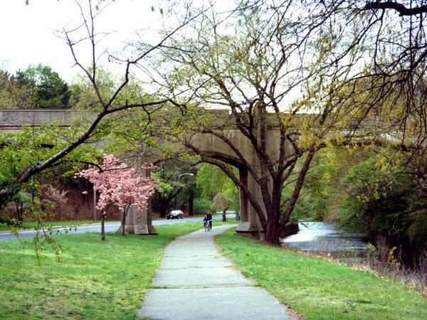 Branch Brook Park_03