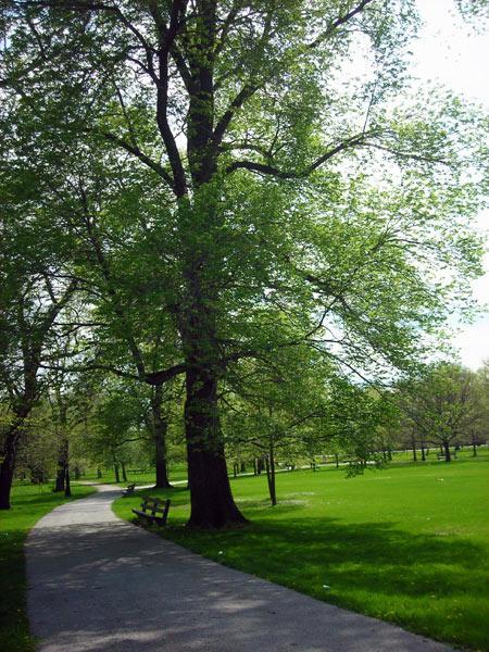 Washington Park-IL_06