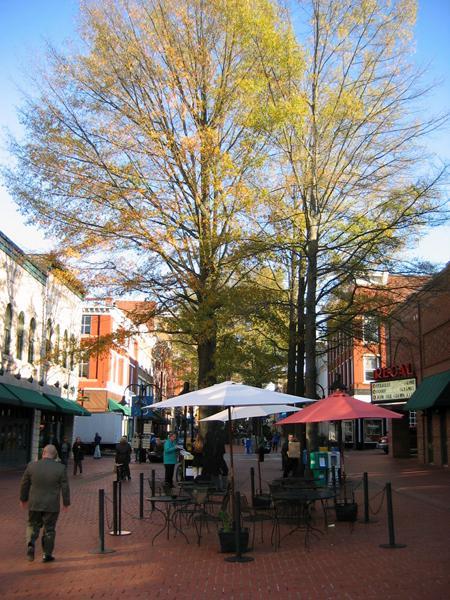 Charlottesville Mall_03