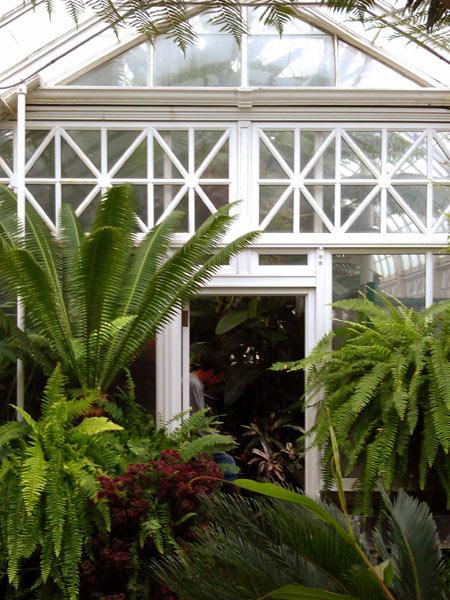 Volunteer Park Conservatory_04