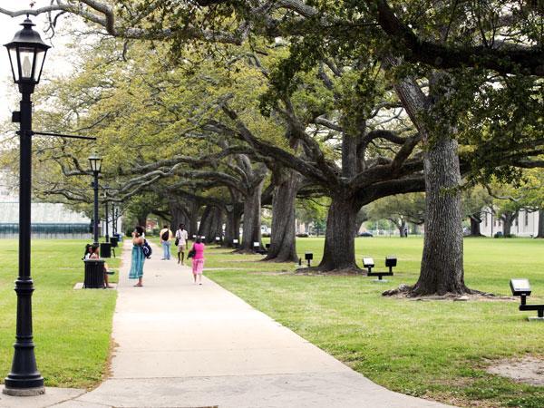 Dillard University_04