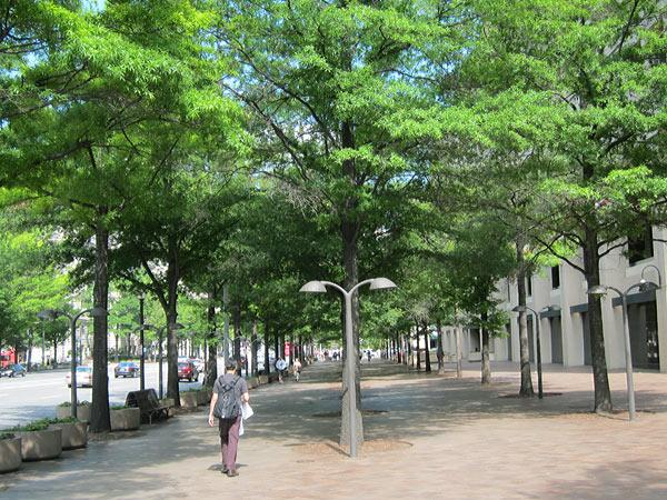 Pennsylvania Avenue_02