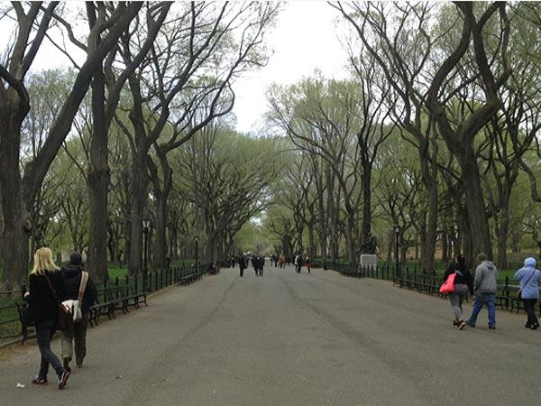 Central Park NYC_08