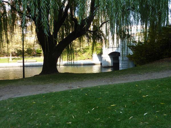 Lechmere Canal Park_03