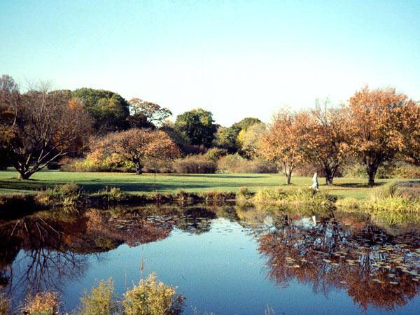 Arnold Arboretum_07