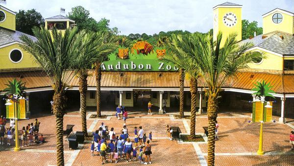 AudubonZoo_feature_2016_KyleJacobson-PeterSummerlin_004.jpg