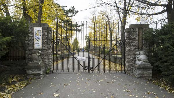 Buffalo zoo entrance court the cultural landscape foundation for Landscaping rocks buffalo ny