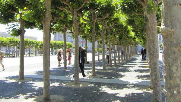 CA_San Francisco_CivicCenterPlaza_signature_AlexisWoods_2011_02.jpg