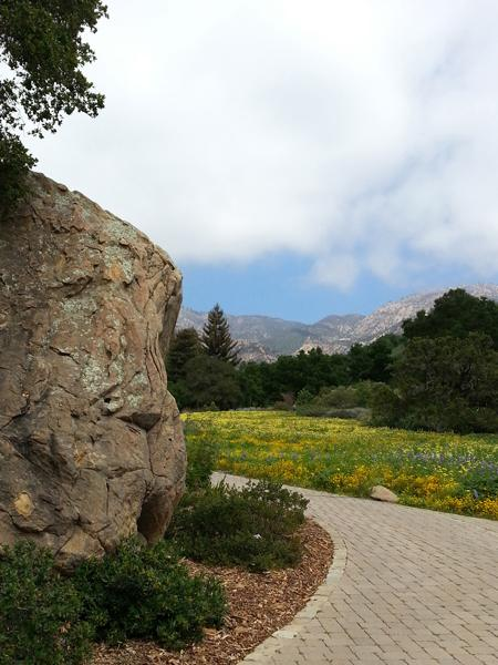 CA_SantaBarbara_BotanicalGarden9_LisaGimmy2014.jpg