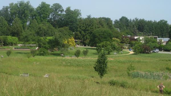 DC_NationalArboretum_signature_CourtneySpearman_2012_02.jpg