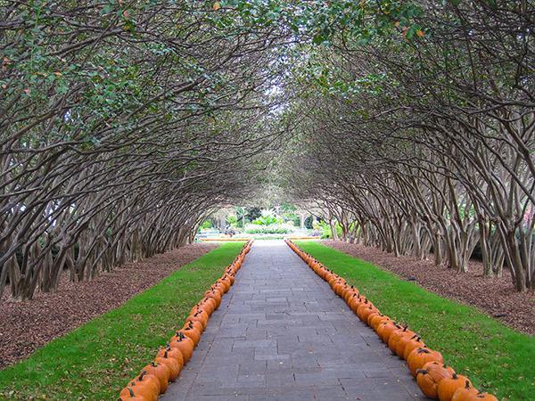 Dallas Arboretum And Botanical Garden The Cultural Landscape Foundation