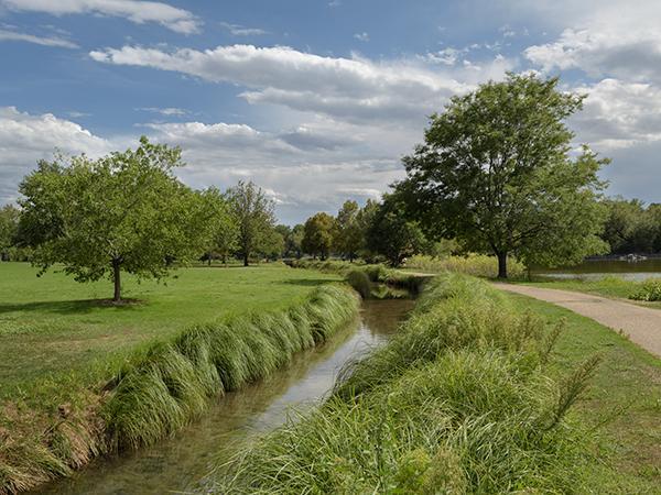 DenverWashington-Park-2--Brian-Thomson2015.jpg