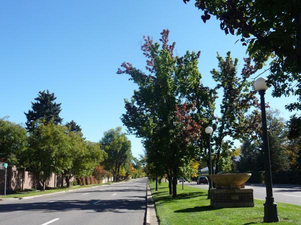 Denver_Park_and_Parkway_System_Annie_Poland2014.jpg