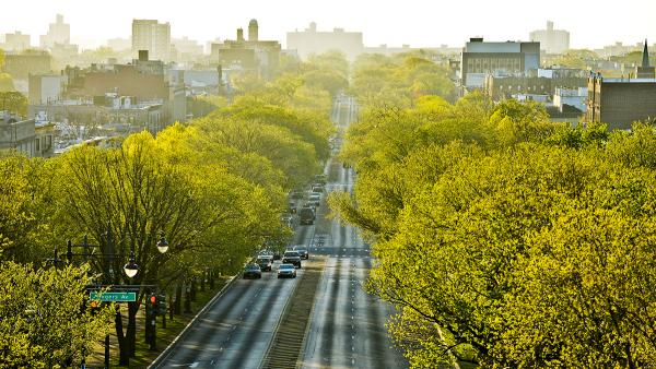 EasternParkway_sig_CourtesyNYCParksRec.jpg