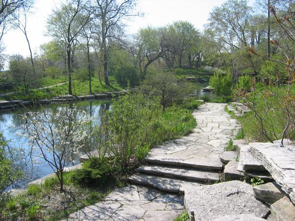 IL_Chicago_LilyPond_2009_5.jpg
