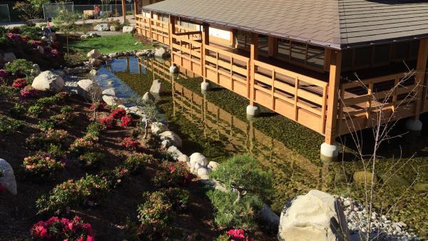 JapaneseFriendshipGardenBalboaPark_signature_2015_02.jpg