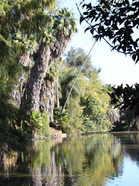 Los Angeles County Arboretum Botanic Garden The Cultural Landscape Foundation