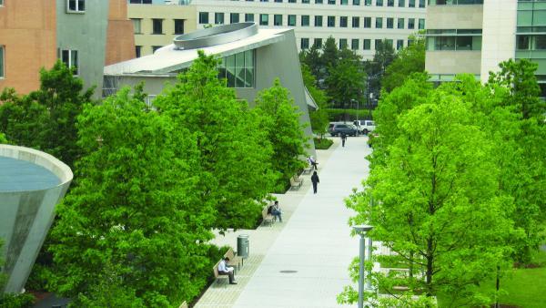 MIT-NorthCourt_signature_RyanIves_2011_11.jpg