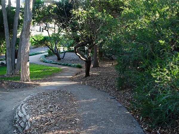 Mildred-E-Mathias-Botanical-Garden--Matthew_Traucht2014-2.jpg