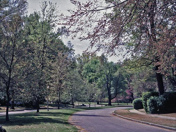 OvertonPark7_CharlesBirnbaum2001.jpg