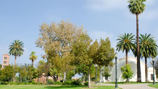 Pasadena_Memorial_Park-Matthew_Traucht2014-1_Signature.jpg