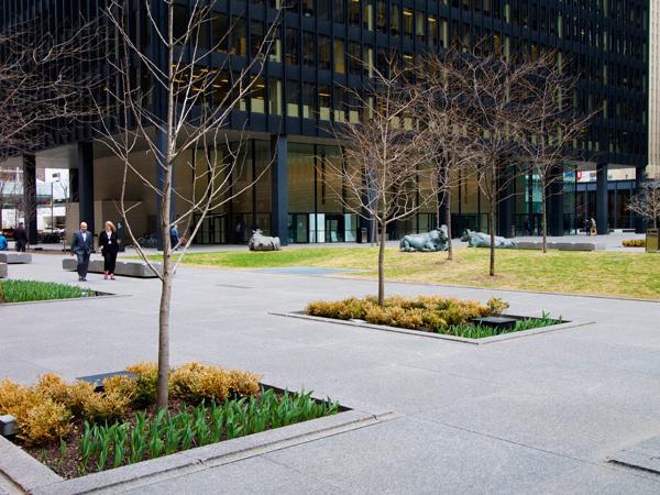 TD-Centre-Bissy-Waariyo.jpg