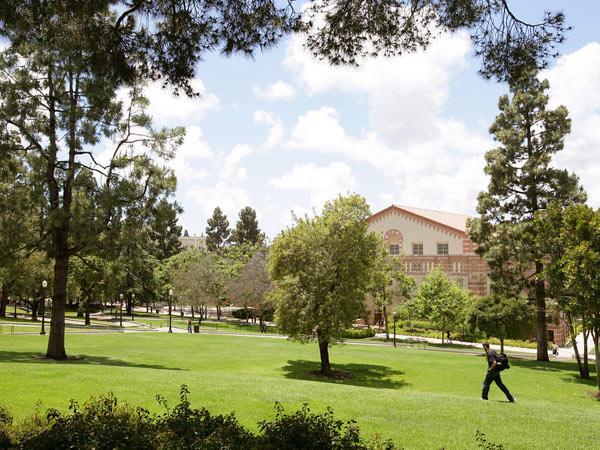 UCLA3-courtesyUCLA.jpg
