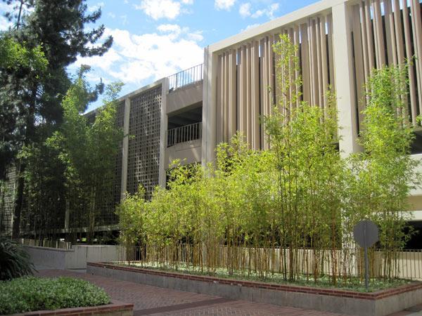 UCLA7-CharlesBirnbaum-2011.jpg