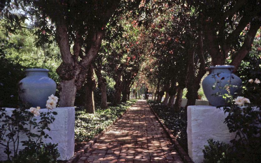 Rancho Los Alamitos_01