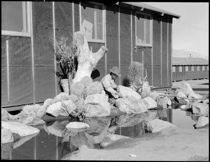 JapaneseInternmentCamp_desertGarden_DorotheaLange_feature.jpg