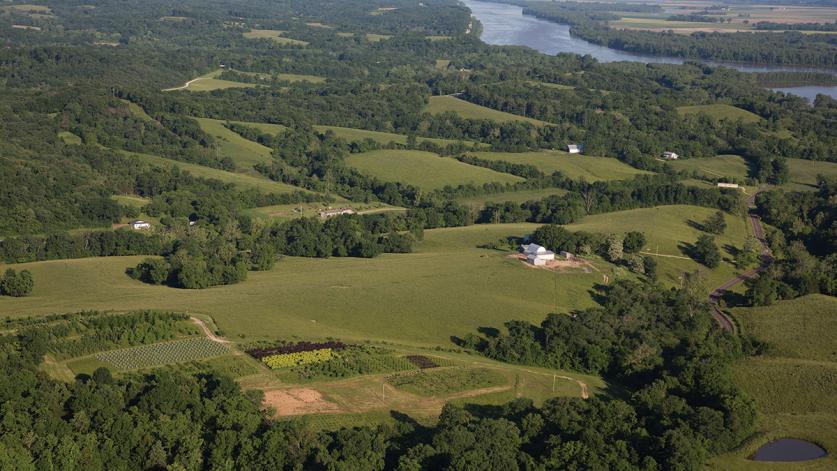 MO_Augusta AVA_Steve Schulte_courtesy Katy Land Trust_2012_1-SIG.jpg