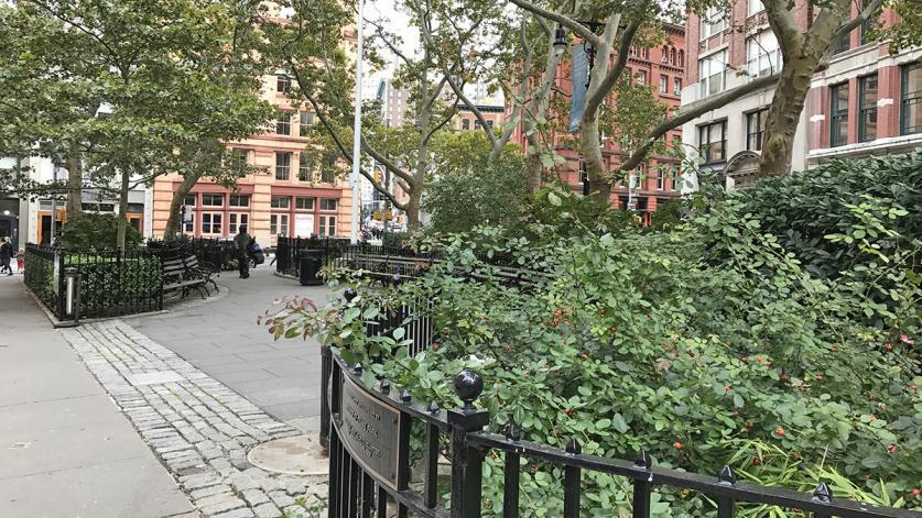 NY_NYC_DuanePark_byCharlesABirnbaum_2018_013_sig.jpg