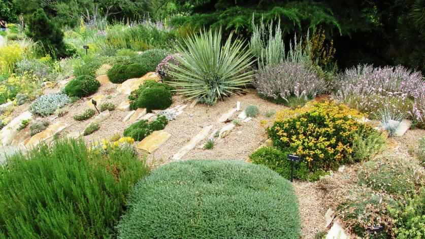 Rock_Alpine _Garden_Brewbooks_Flickr_2016_sig.jpg
