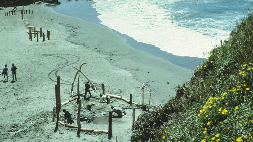 SeaRanch_beachsculptures.jpg