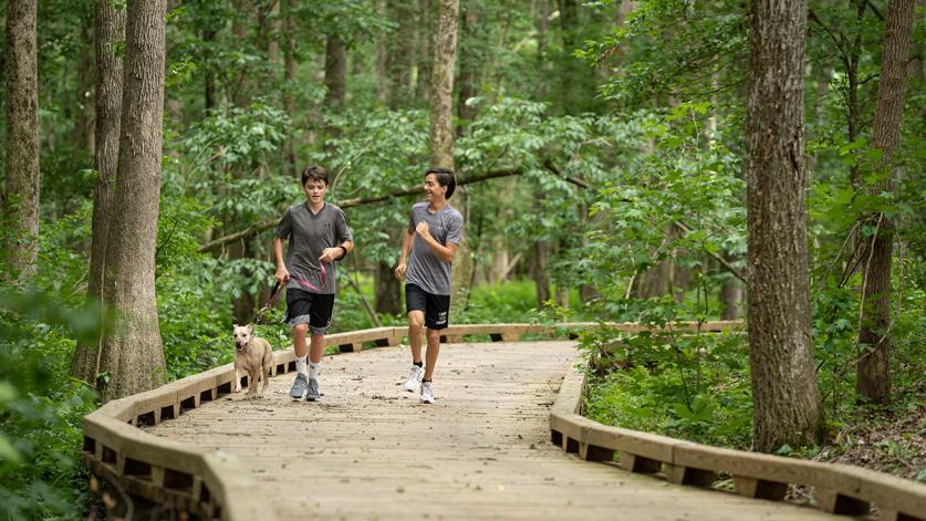 Trail2-sig.jpg