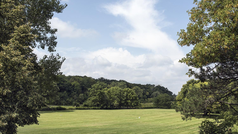 2 EDaniel_Paupers' Cemetery & Woods.jpg