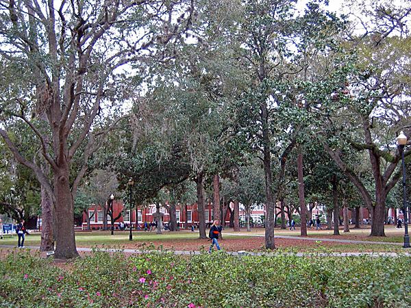 University of Florida_01