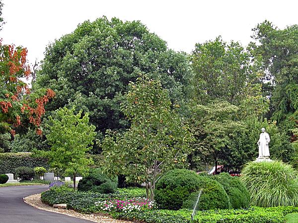 Oak Hill Cemetery DC_04