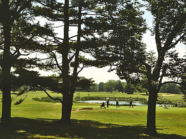 Goodwin Park_03
