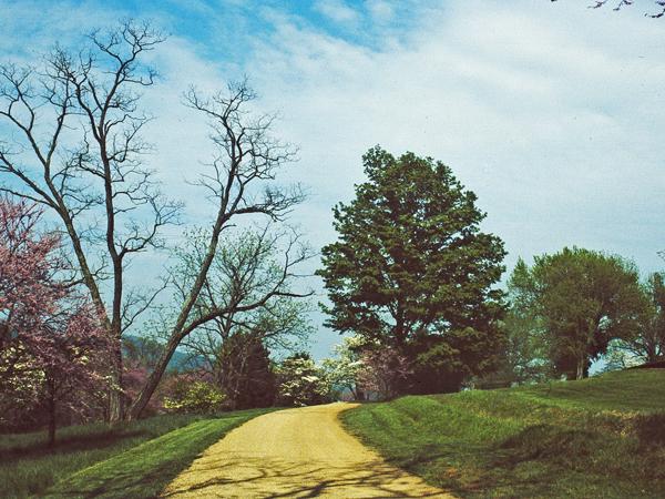 Monticello_07