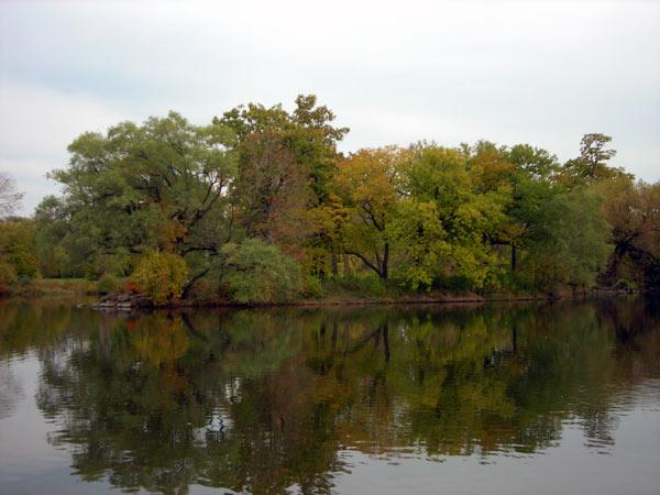 Washington Park-IL_04