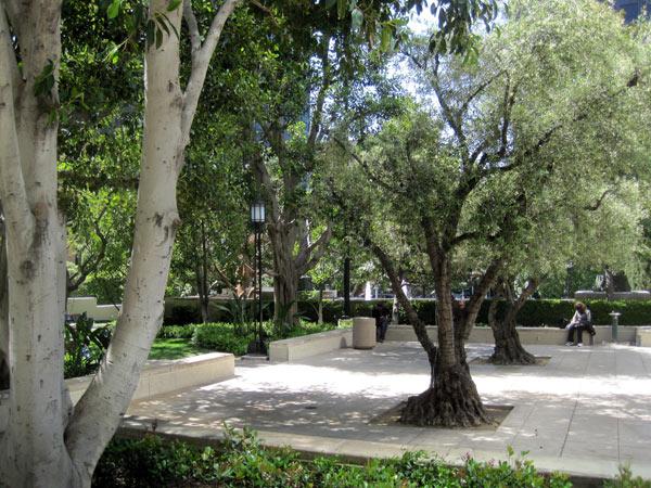 Maguire Gardens_07