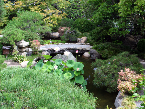 Hannah Carter Japanese Garden_02