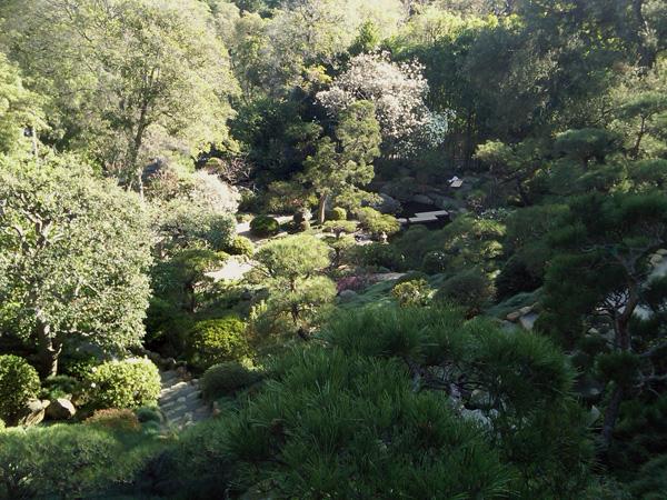 Hannah Carter Japanese Garden_06