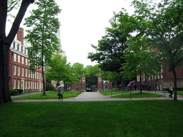 Harvard Yard_03