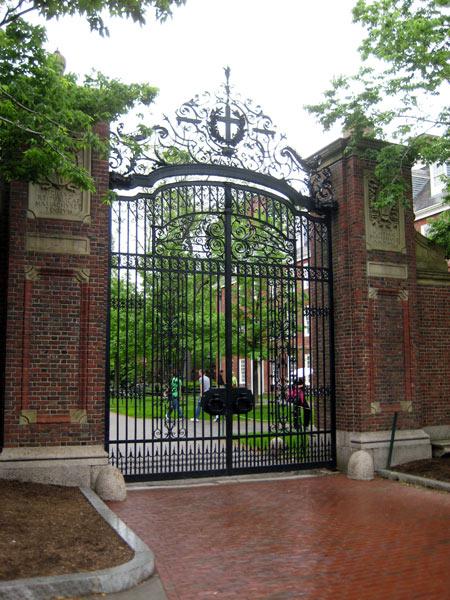 Harvard Yard_05