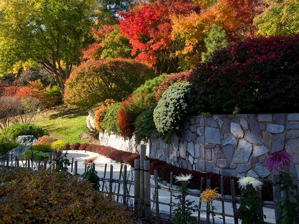 Missouri Botanical Garden_08