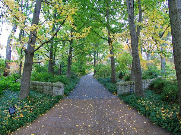 Missouri Botanical Garden_06