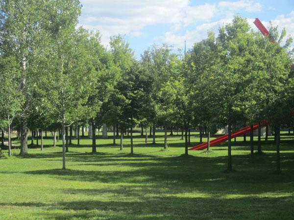 Minneapolis Sculpture Garden_11