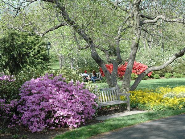Azalea Garden_Fairmount Park_01